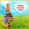 Successful Stock Trading Affirmations with Supraliminal Track by Deep Trance Now