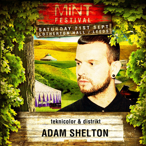 Adam Shelton - Mint Festival Podcast #4