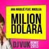 Ana Nikolic feat. Nikolija - Milion dolara DOWNLOAD U OPISU ( DJ Vukk 2013 RMX )