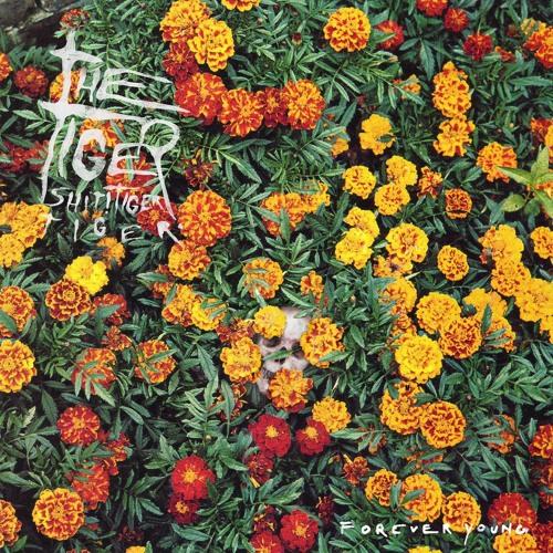 TIGER SHIT! TIGER TIGER - TWINS (FOREVER YOUNG LP/CD/DIGITAL)