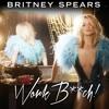 Work Bitch - Britney Spears Snnipet