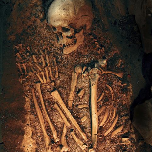 Dead To The Bone
