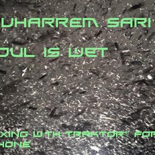 MUHARREM SARI - SOUL IS WET