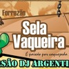 Sela Rasgada Mulher Vc É Linda Versão Dj Argentino