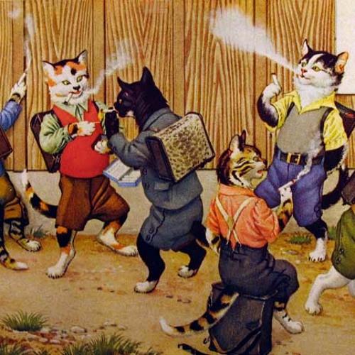 Catty's Katzenminze
