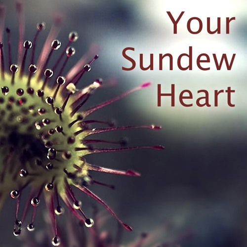 Your Sundew Heart (free download)