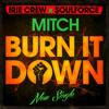 [Free Download] Mitch - Burn it down (SoulForce/Irie Crew Prod.)