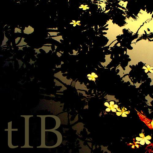 tIB - Pomeroy