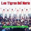 Download LOS TIGRES DEL NORTE Asi Como Tu Mp3