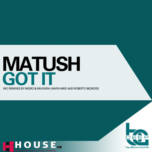 Got It by Matush (Roberto Bedross Remix) - House.NET Exclusive