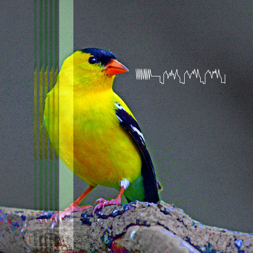 Goldfinch@Heliopause-disquiet0089-vger