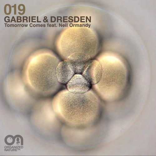 Gabriel & Dresden feat Neil Ormandy - Tomorrow Comes (Moska Remix) OUT NOW!