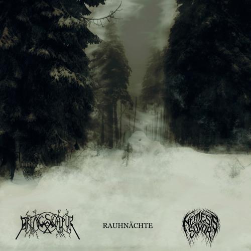 Rauhnächte (Split Nemesis Sopor, 2013, Preview)