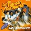 Download LOS TIGRES DEL NORTE Que De Raro Tiene Mp3