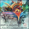 Birds of Paradise-Tunnel Visions (Flight Patterns Full Album Available Now!!! Click Buy Link)