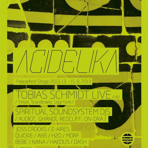 Tobias Schmidt LIVE@13/9/2013 ACIDELIKA Freezefest stage,near Prague