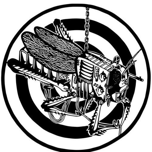 Vandal - Natty Dreadlocks (Kaotik 08)