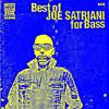 37. Joe Satriani