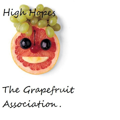 High Hopes by The Grapefruit Association