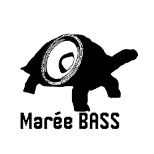 "yAyoLand - ""Marée Bass"" preview"