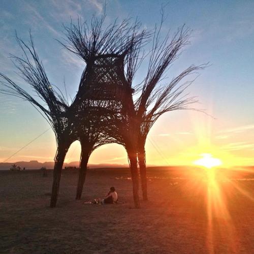 Mark Slee - BRC: Desert Sunset [September 2013]