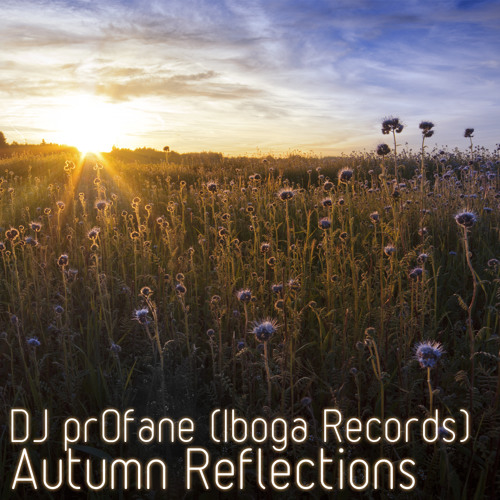 DJ pr0fane (Iboga Records) - Autumn Reflections
