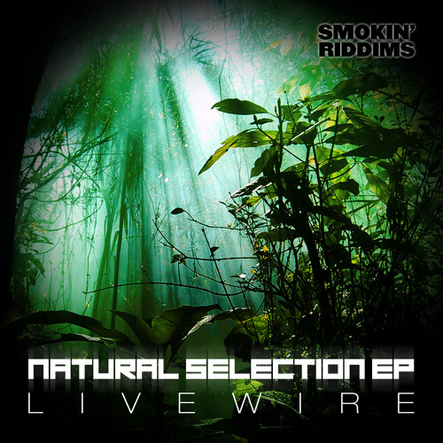 Livewire - Salvation (Natural Selection EP) (Smokin Riddims)
