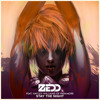 Zedd - Stay the Night (Mirror Image Festival Remix)