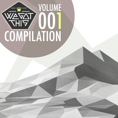 We Got This Compilation - Volume :001