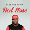 Sage the Gemini-Rednose