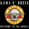 Welcome To The Jungle (guitar by Kama)