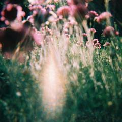Angus Stone - Broken Brights - Robin Mood Remix - Free DL