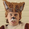 What Does The Fox Say (Acoustic) - The Raging Idiots