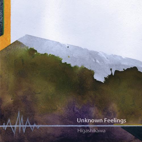 Unknown Feelings