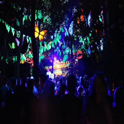 Frog Spawn (Pieman vs Mikey Logic) - Recorded live at Nozstock Festival 2013