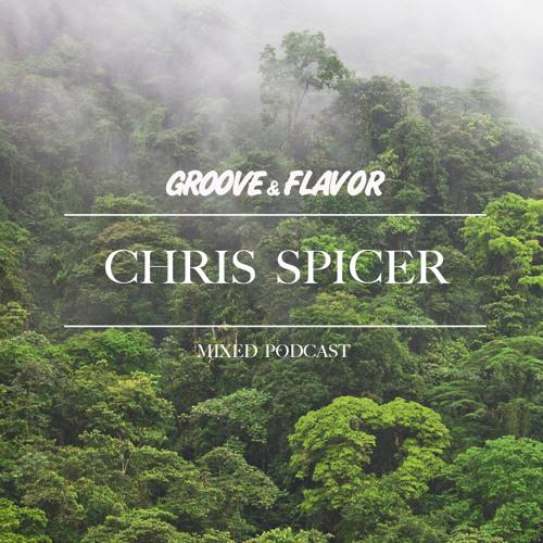 Chris Spicer - Goodbye Summer Mix
