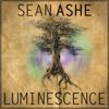 Luminescence (2013 Single Version) Download at seanashe.bandcamp.com