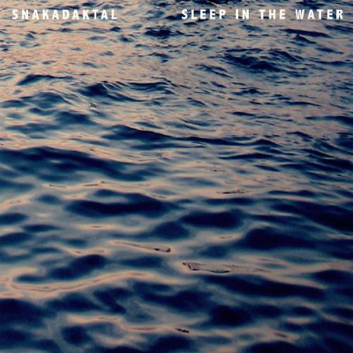 Snakadaktal - Fall Underneath (radio edit)