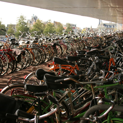 How Friendly Is Amsterdam With Its Bikes?