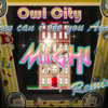 Owl city - when can i see you again (Mighi Remix)