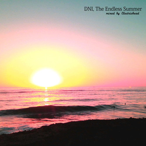 Electrichead - DNI, The Endless Summer
