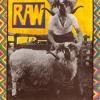 """""""Son of Sham"""" by Raw McCartney"""
