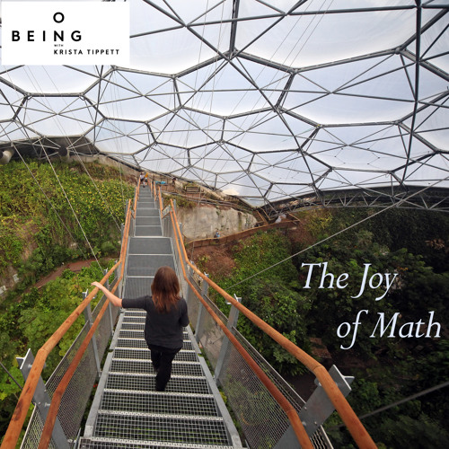 Keith Devlin — The Joy of Math and Learning and What it Means to Be Human