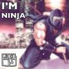 I'm a Ninja - Ninja Gaiden Unbreakable Determination Remix