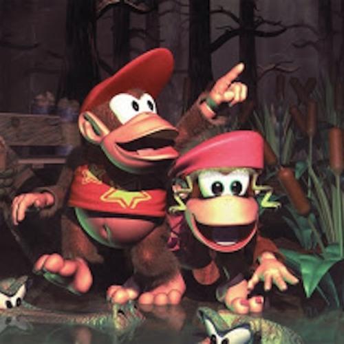 Donkey Kong Country - Forest Interlude (Dj CUTMAN Remix)