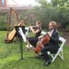 Canon In D by Pachelbel - Flute, Harp, Cello Trio
