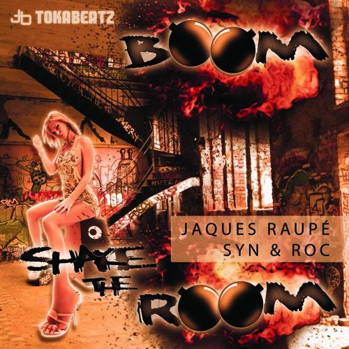 Jaques Raupé vs. Syn & Roc - Boom  Shake The Room (Radio Edit)