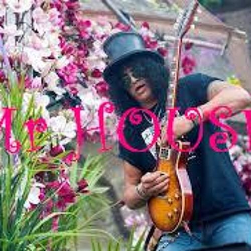 Tomorrowland 2013 - Mr HOUSE part 6