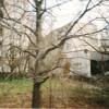Dance Gavin Dance Tree Village