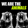 We Are The Animals - Queen vs Martin Garrix (Dafire Mashup)